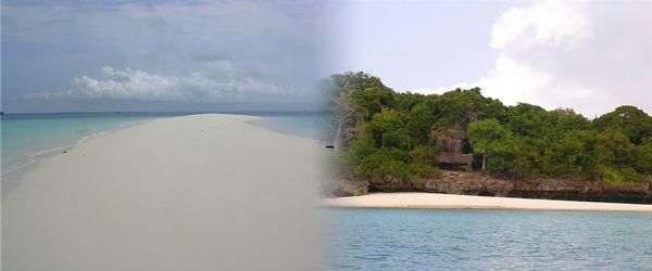 Eco & Culture Zanzibar, Zanzibar Tours Operators